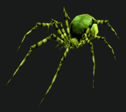 Spiders for Hunter PvP