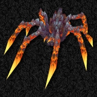 Solix - Orange Lava Spider