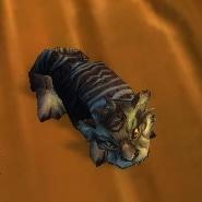 Nightsaber Cub Pet