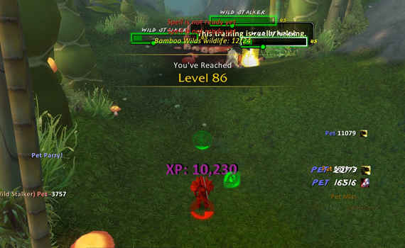 WoW Mists of Pandaria Level 86