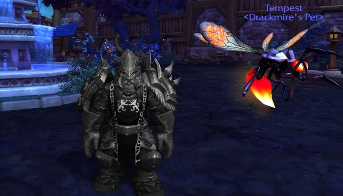 Drackmire, Dwarf MM Hunter